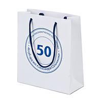 Пакет бумажный с логотипом (350х320х150 мм) №20
