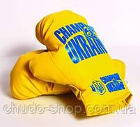 Боксерская груша Champion of Ukraine средняя Danko toys, фото 3