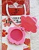 """Блеск для губ FFLEUR """"Цветочек""""  ABD LG-18 /04-3"""