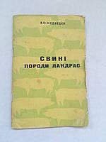 В.Медведєв Свині породи Ландрас