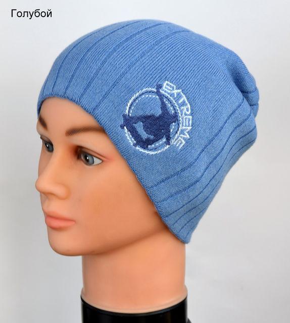 Детская демисезонная шапка для мальчика