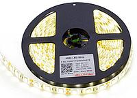 Светодиодная лента SMD 5050 60 LED/5 IP65 MS