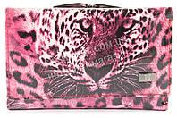 Стильный женский компактный кожаный кошелек WILDNESS art. 2103T-C26 розовый, фото 1