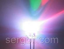 5мм светодиод RGB быстро мигающий два вывода