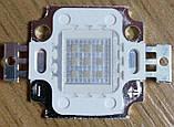 10Вт светодиод 20x20мм синий 450нм 900мА 10В HQ, фото 5