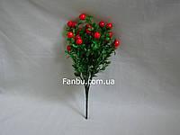 Куст крупных ягод (цвет ягод красный)