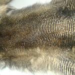 Мех натуральный лиса с тонировкой шкуры , фото 2