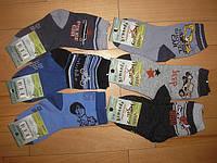 Детские носки для мальчиков оптом Armando 19/22-35/38 pp., фото 1