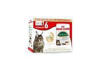 АКЦИЯ Royal Canin Maine Coon -Влажный корм для котов породы Мейн-кун, 4+2