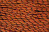 Шнур 5мм с наполнителем (100м) оранжевый+черный