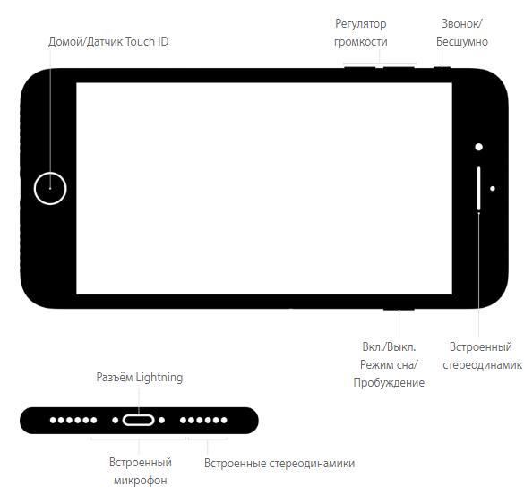 Внешние кнопки и разъёмы iPhone 7 Plus