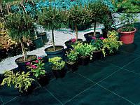 Агроткань от сорняков Agreen 100 г/м2