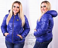 Короткая женская куртка синяя из плащевки, батал ( р. 48-56  )