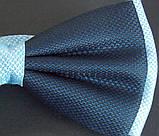 Бабочка галстук Roberto Cassini сине-голубая, фото 3
