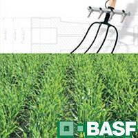 Дианат ВР (10л) - послевсходовый гербицид на кукурузу, зерновые культуры
