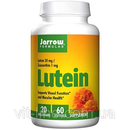 Jarrow Formulas, Лютеин, 20 мг, 60 капсул, фото 2