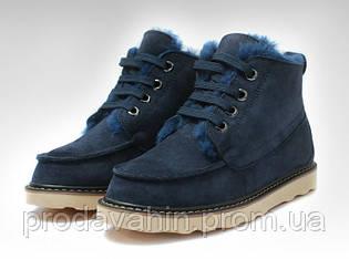 Ботинки  UGG David Beckham Boots Dark Blue оригинал
