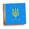 Шкатулка-книга на магните с 9 отделениями XL Герб України