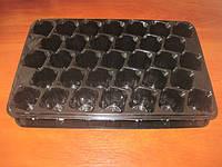 Пластиковая кассета для рассады на 33ячейки (+поддон) яч 50х50х60 (h)