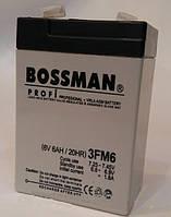 Аккумулятор Bossman 6V 6Ah