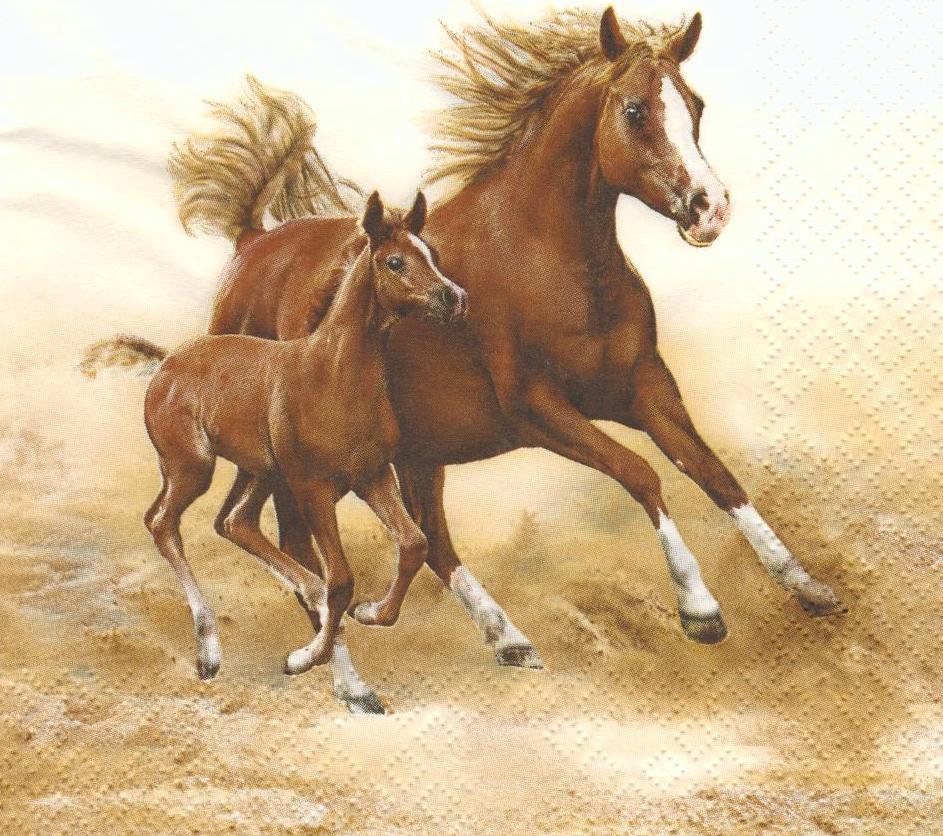 Серветка декупажна Кінь з лошам 6094