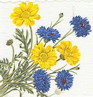 Редкая салфетка декупажная Полевые цветы 6133