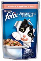 Felix Fantastic с форелью и зелеными бобами в желе, 10x100 гр