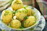 Blend Filling Potato (Картошка)