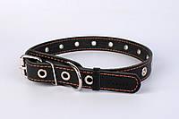 Ошейник Collar безразмерный, фото 1