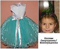 Детское карнавальное платье Смородинка, Виноградинка (Радуга) прокат, Киев, Троещина