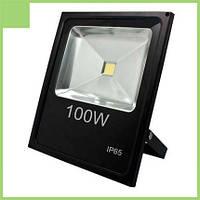 Прожектор LL-841 1LED 100W белый 6400K 230V (335*70*290mm) Черный IP65