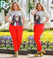 Женские штаны больших размеров 656 гл $