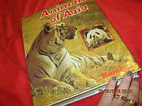 Jiri Felix Animals of Asia книга атлас энциклопедия БОЛЬШАЯ СТАРАЯ на английском языке животные АЗИИ, фото 1
