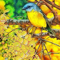Схема для вышивки бисером Лимонная птица, размер 30х30 см