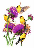 Схема для вышивки бисером Птицы в цветах, размер 28х40 см