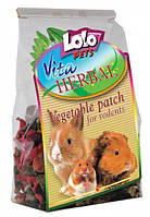 LoLo Pets VITA HERBAL Vegetable Patch Rodents Корм-лакомство для грызунов