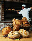 Как открыть пекарню с нуля?