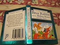 Книга маленькая на английском языке сказка о зайце