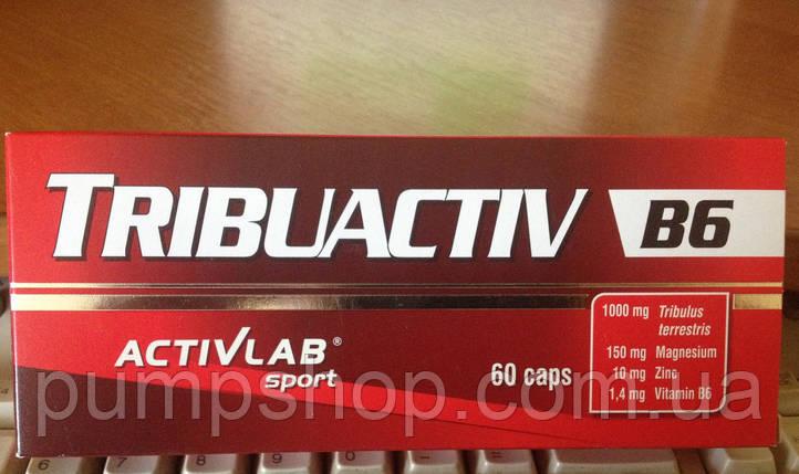 Трибулус Activlab Tribuactiv B6-60 капсул, фото 2