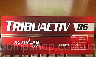 Трибулус Activlab Tribuactiv B6-60 капсул