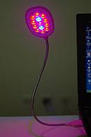 Лампа с USB разъемом под компьютер для подсветки растений, аквариума на 13 диодов (11 красных/2 синих)