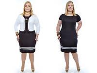 Женский костюм-двойка (платье+болеро) больших размеров №180 48-62 р
