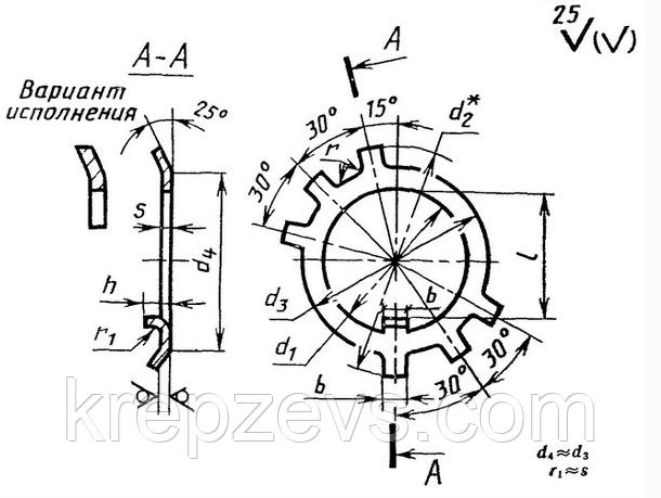 Шайба 24 стопорная ГОСТ 11872-80, DIN 5406, многолапчатая