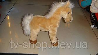 Лошадка (2 вида)