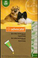 Капли от блох Bayer Advocate (Баер Адвокат) для собак до 4 кг 1 пипетка