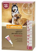 Капли от блох Bayer Advocate (Баер Адвокат) для собак весом 10-25 кг 1 пипетка