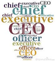 CEO  (GameDev)