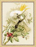 Набор для вышивания крестом «Белый какаду» (1362)