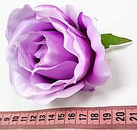 Головка розы вивальди №10