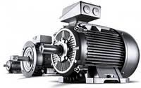 Промышленные электродвигатели асинхронные, трехфазные, с короткозамкнутым  ротором.(исполнение 1081)